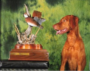 Monty Hunting Dog of the Year